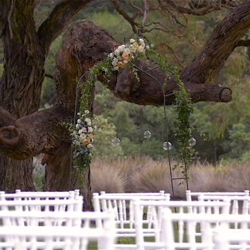 Tawharanui Lodge Wedding